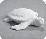 Sea Turtle Box $23
